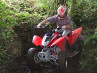 Adults Quad Biking For Groups Of Up To Six
